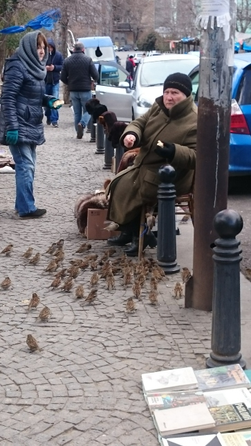Dry bridge flea market trader with some hungry sparrows