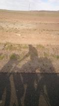 Cruising along the desert road